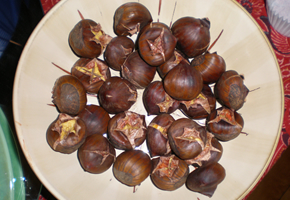 chestnuts_290_200