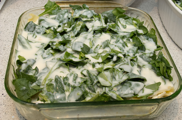 white_lasagna_cream_590_390