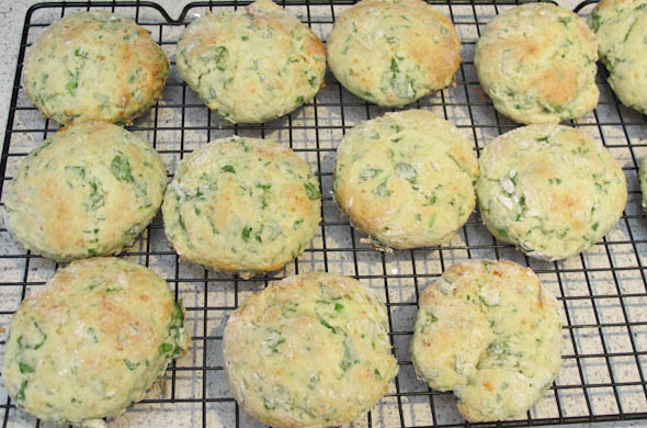 The Three Bite Rule - Spinach Parmesan Biscuits
